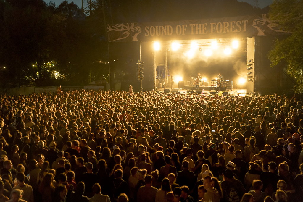 20170804-Germany-Marbachstausee-Sound-of-the-Forest-Day-1-7RM2-0139.jpg